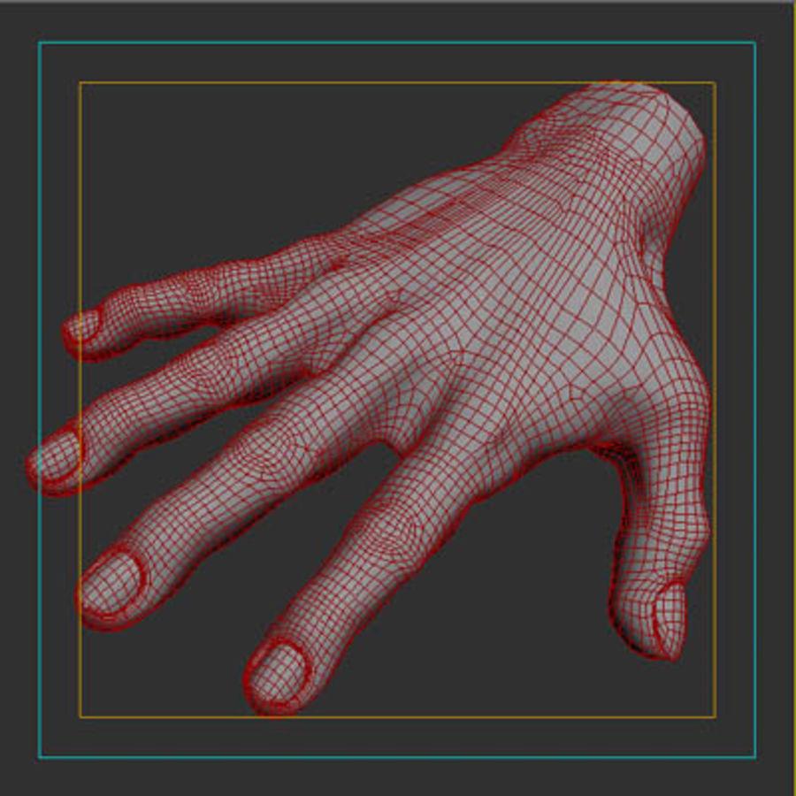 menselijke hand royalty-free 3d model - Preview no. 11