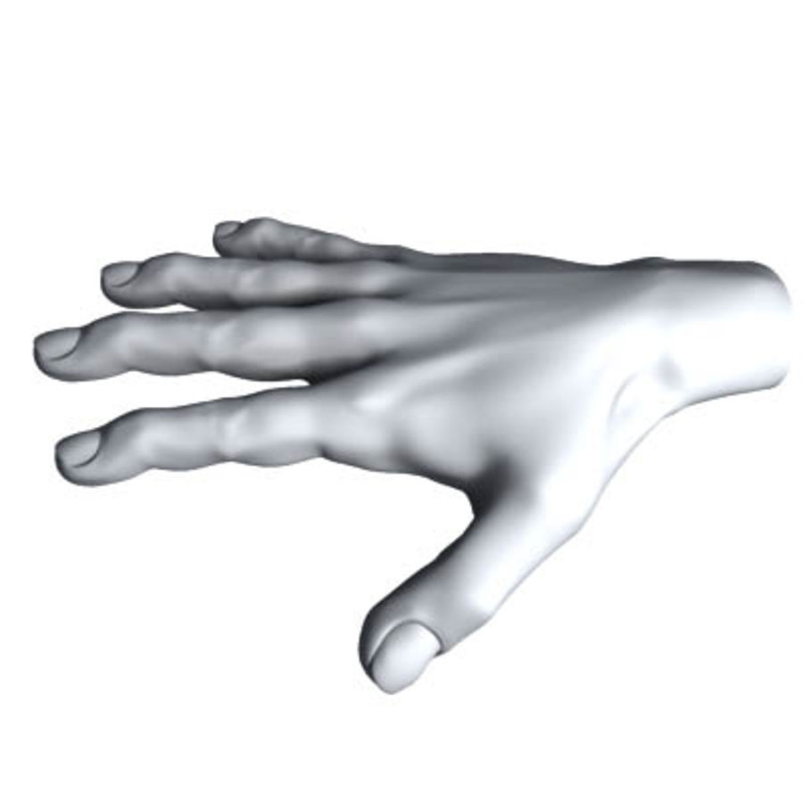 menselijke hand royalty-free 3d model - Preview no. 5