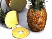 pineapple.zip 3d model