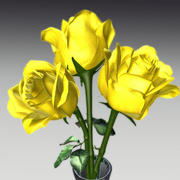 Roses_01 3d model