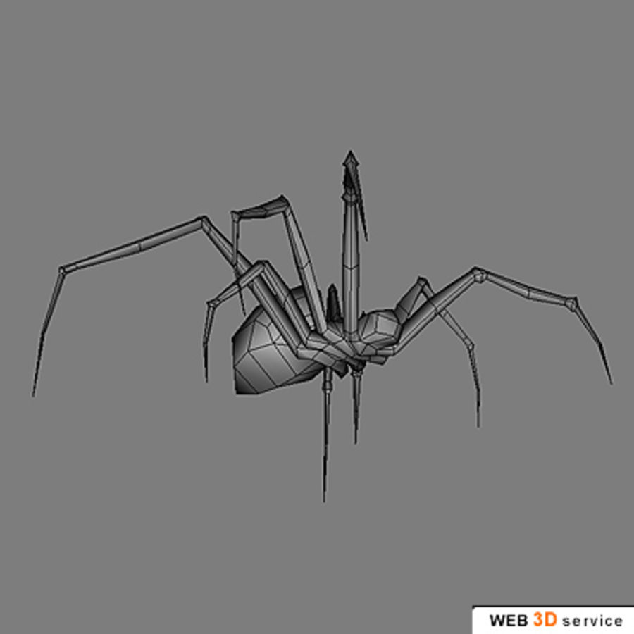 spider.3DS royalty-free 3d model - Preview no. 2