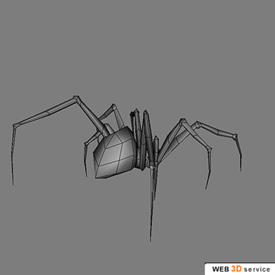 spider.3DS royalty-free 3d model - Preview no. 4