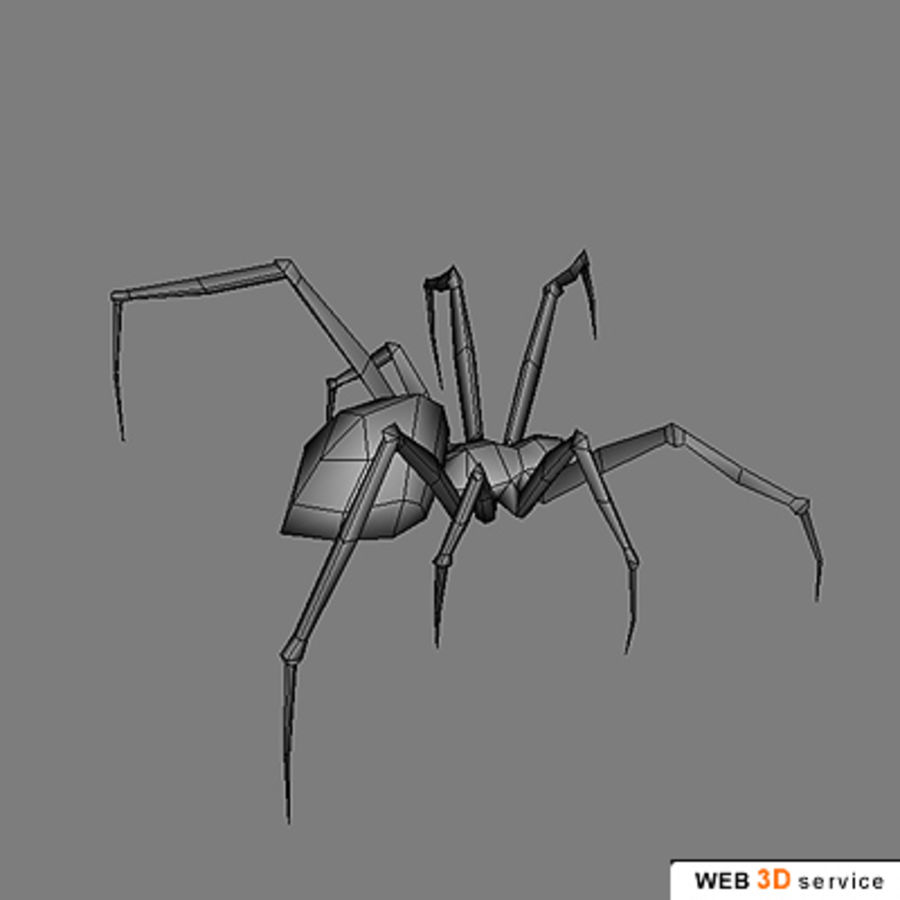 spider.3DS royalty-free 3d model - Preview no. 3