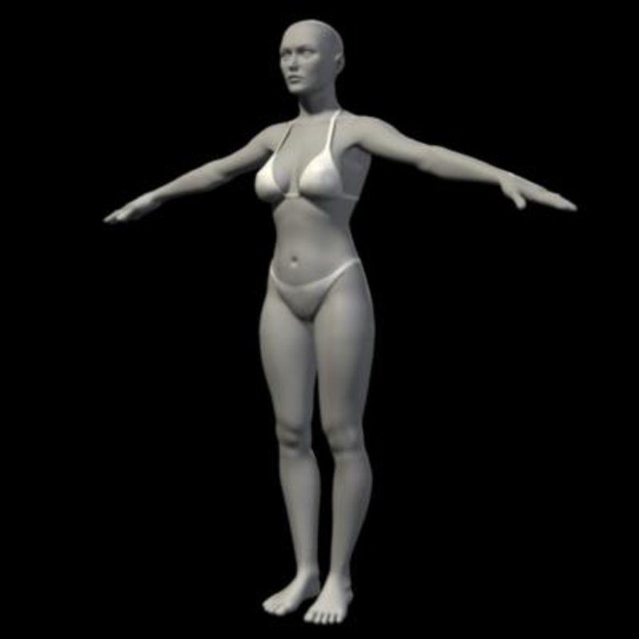 Grundlegende weibliche Maschen royalty-free 3d model - Preview no. 2