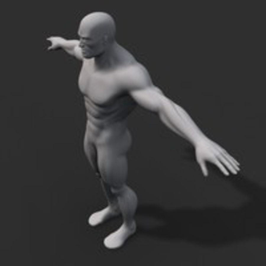 corpo maschile royalty-free 3d model - Preview no. 2