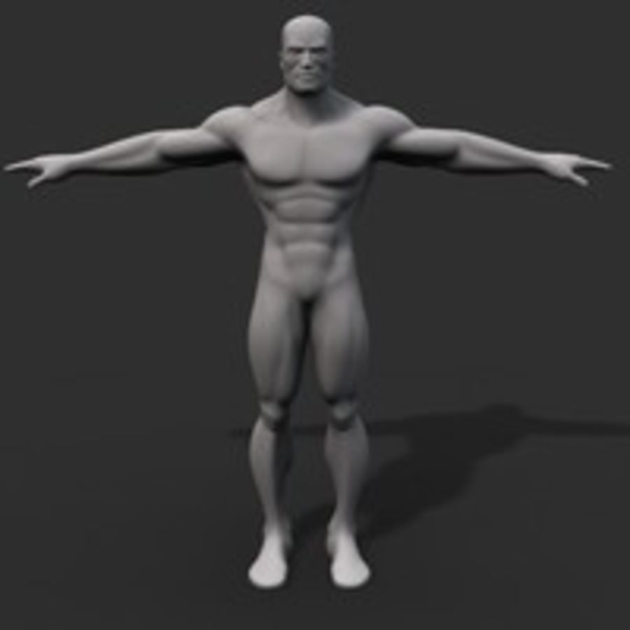 corpo maschile royalty-free 3d model - Preview no. 1
