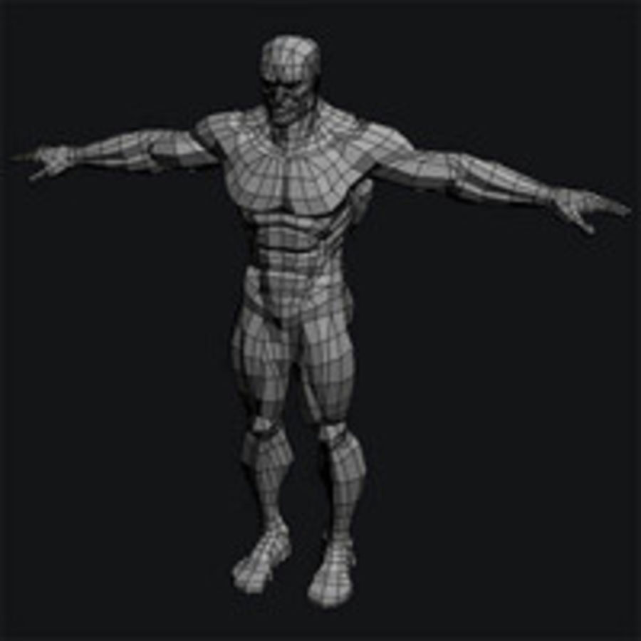 corpo maschile royalty-free 3d model - Preview no. 6