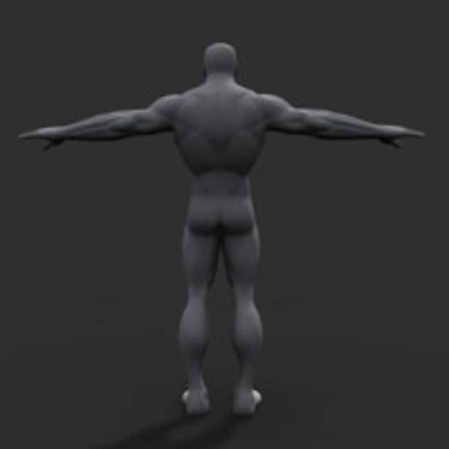 corpo maschile royalty-free 3d model - Preview no. 3