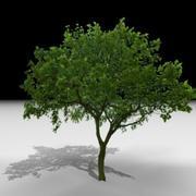 J3D_TREE018.zip 3d model