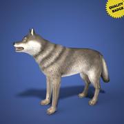 Modèle 3d de Wolf en temps réel 3d model