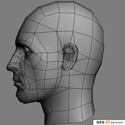 908tr_Male_Head.zip 3d model