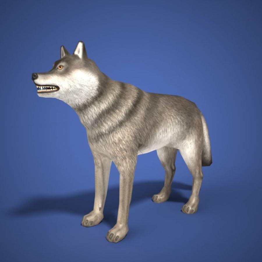 Colección de animales en tiempo real royalty-free modelo 3d - Preview no. 4