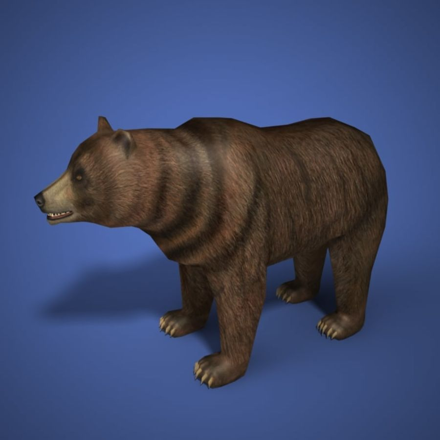 Colección de animales en tiempo real royalty-free modelo 3d - Preview no. 3