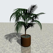 Potted_Plant 3d model