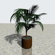 Plant in bloempot 3d model