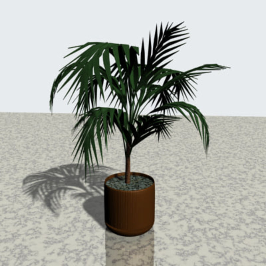 Plant in bloempot royalty-free 3d model - Preview no. 1