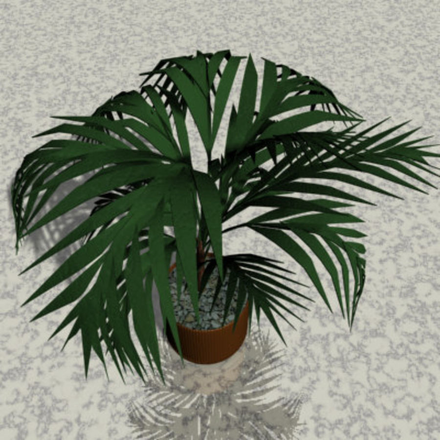 Plant in bloempot royalty-free 3d model - Preview no. 2