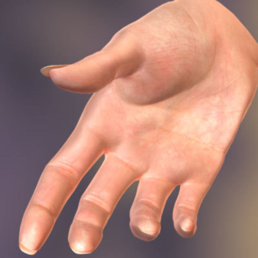 Vrouwelijke hand royalty-free 3d model - Preview no. 4