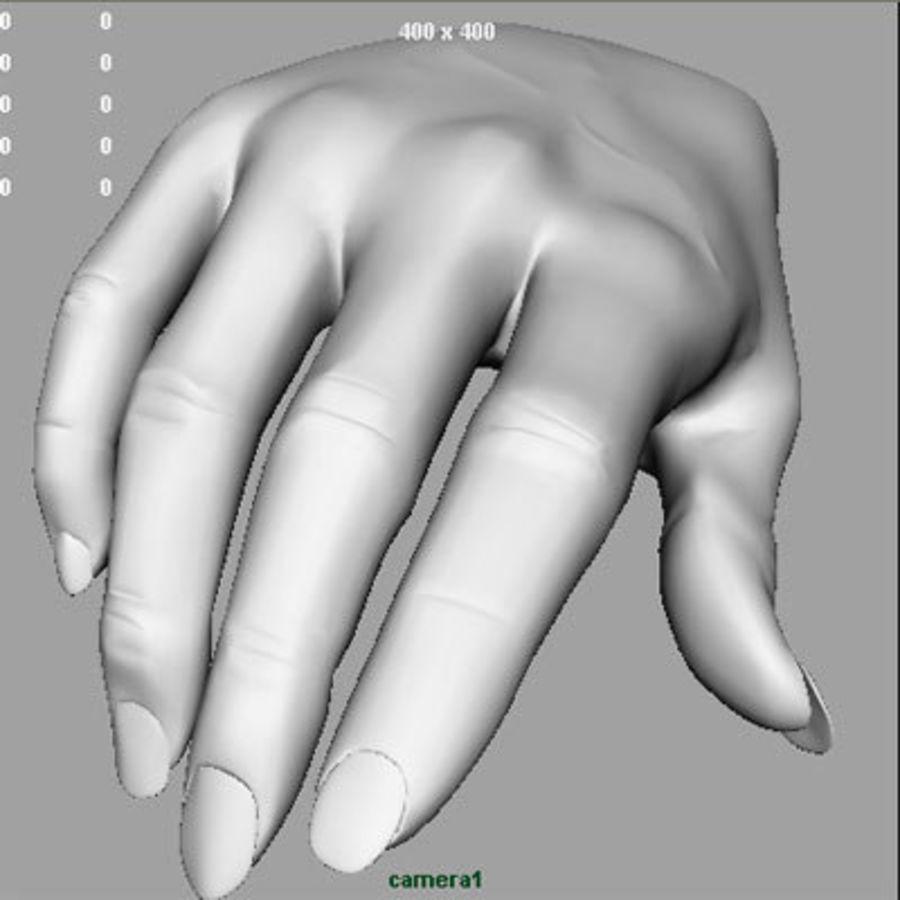 Vrouwelijke hand royalty-free 3d model - Preview no. 8