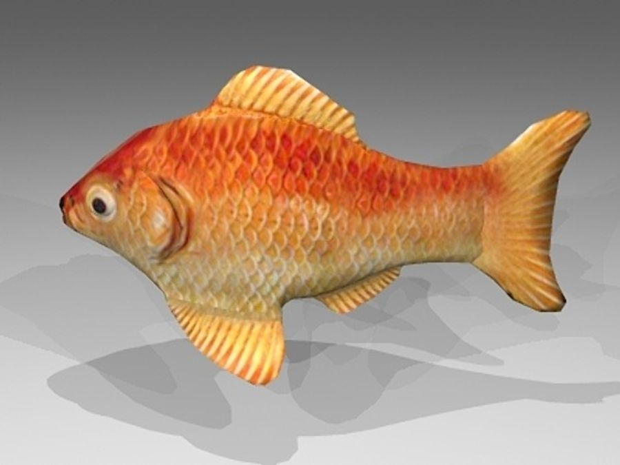 Goldfisch royalty-free 3d model - Preview no. 5