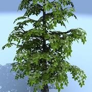 niskie drzewo 05 3d model