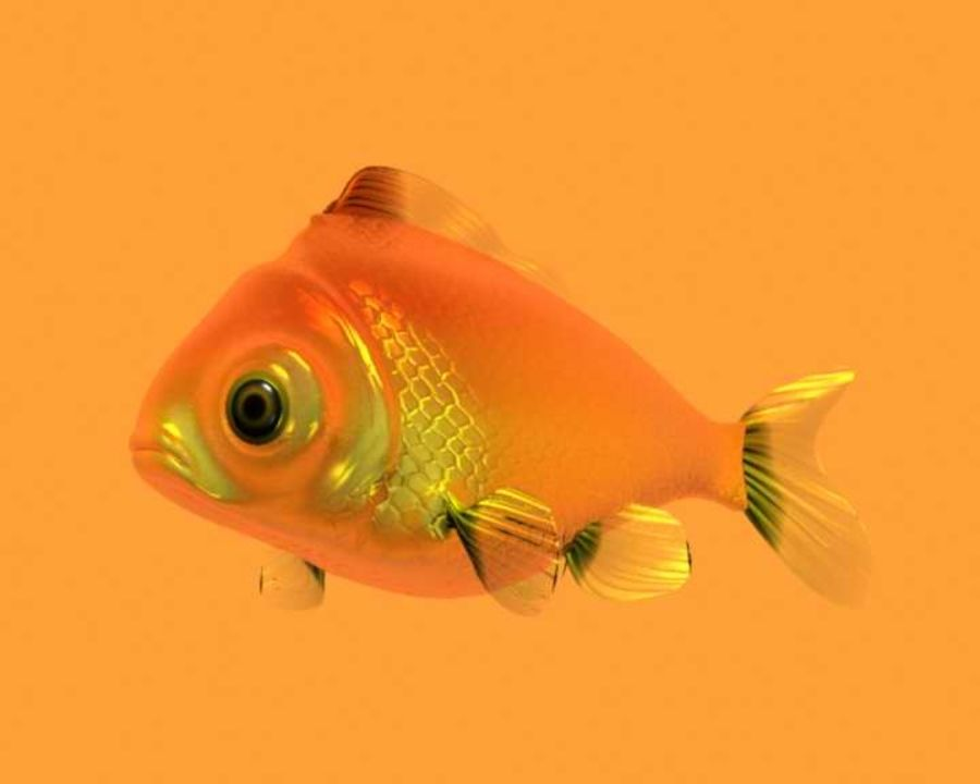 Gold Fish royalty-free 3d model - Preview no. 12