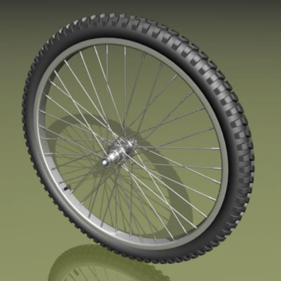 Two types of bicycle wheels royalty-free 3d model - Preview no. 3
