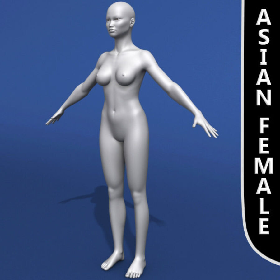 Asian Female 3d Model royalty-free 3d model - Preview no. 2