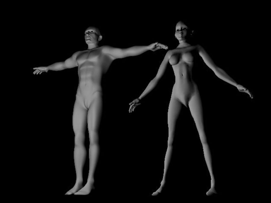 Corps: Homme et Femme royalty-free 3d model - Preview no. 1