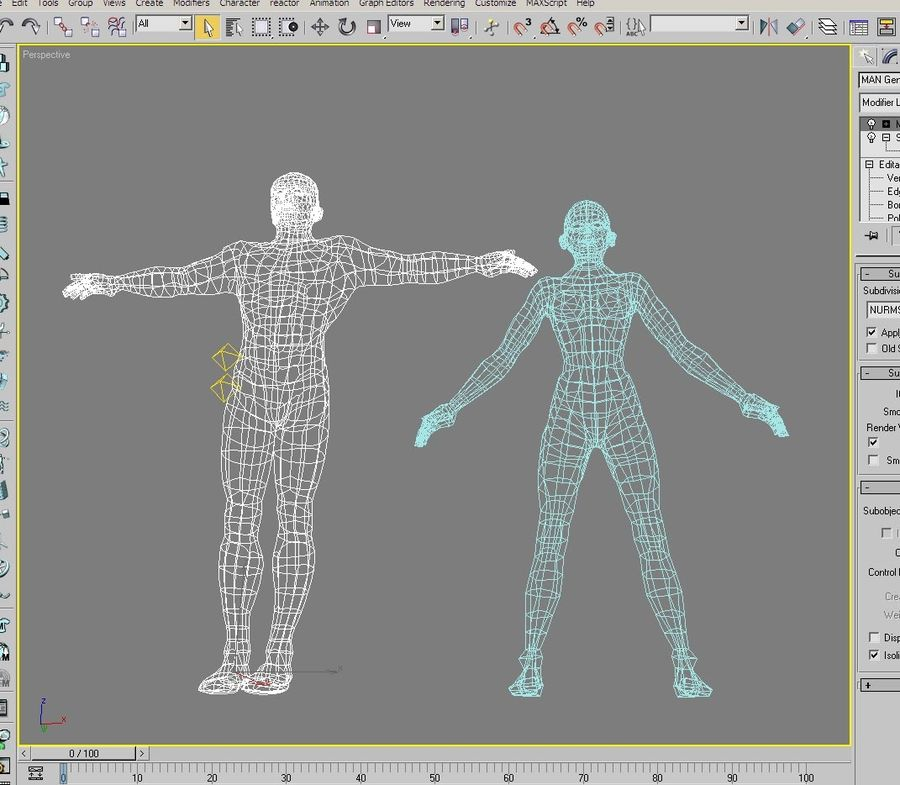 Bodies: Male and Female royalty-free 3d model - Preview no. 1