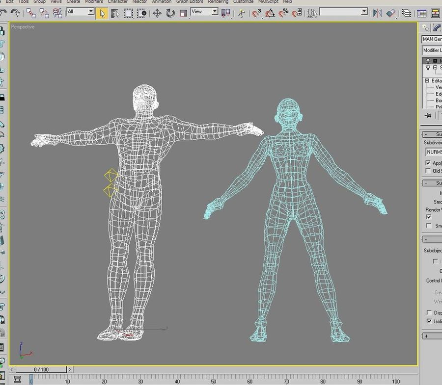 Bodies: Male and Female royalty-free 3d model - Preview no. 6