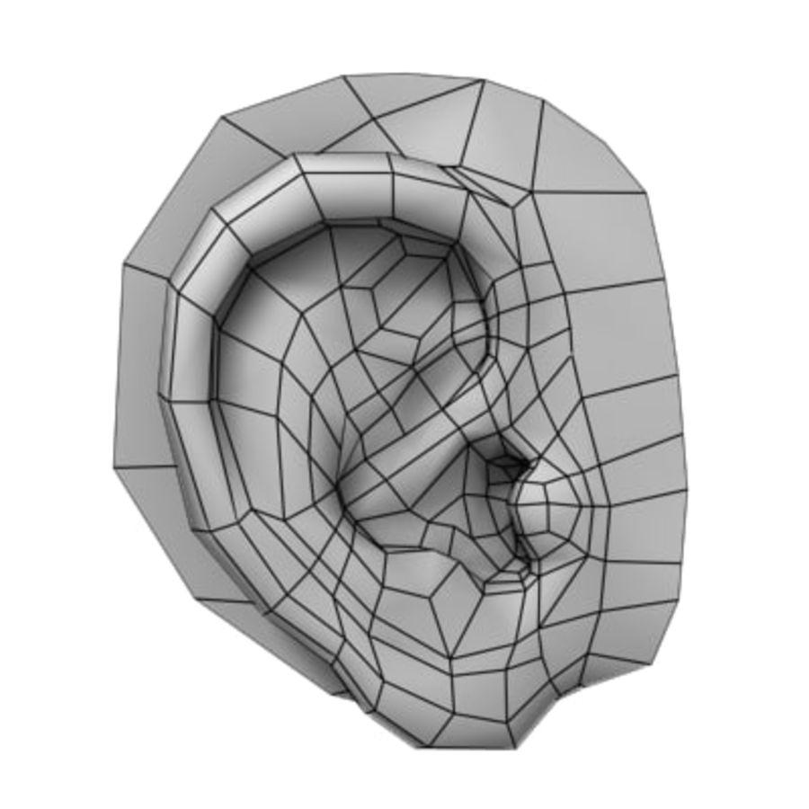 Orecchio - umano royalty-free 3d model - Preview no. 5