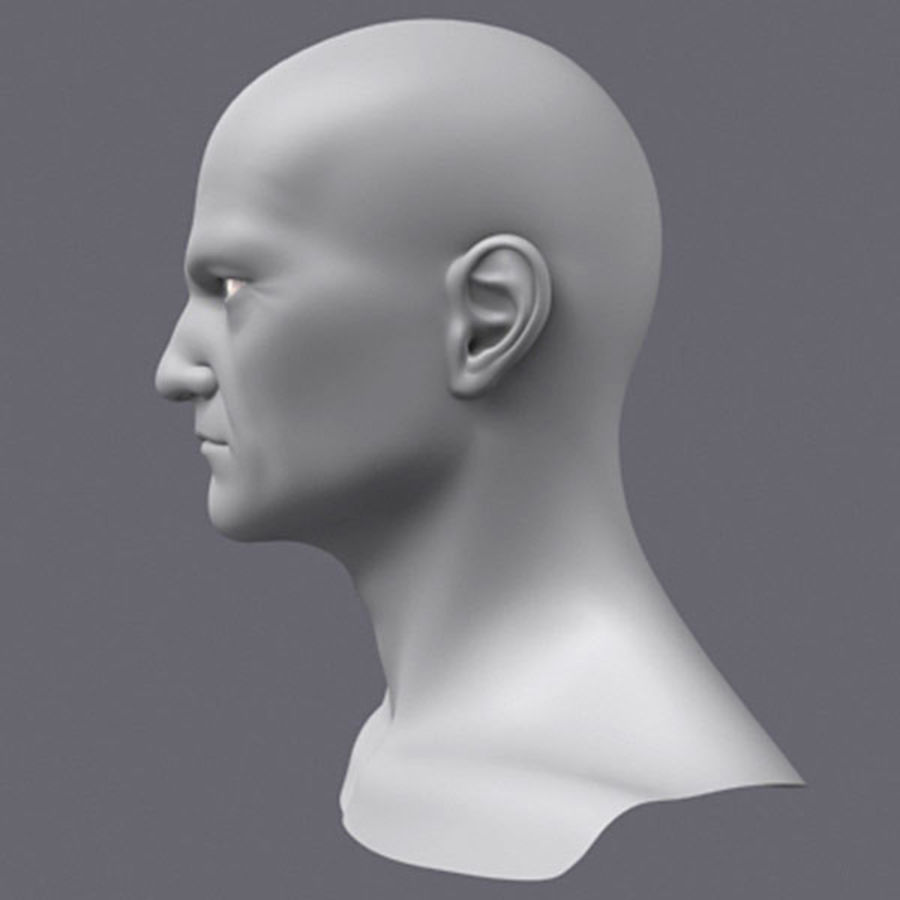 Midlle Aged Man Head 3d Model royalty-free 3d model - Preview no. 3