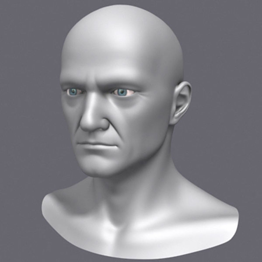 Midlle Aged Man Head 3d Model royalty-free 3d model - Preview no. 2