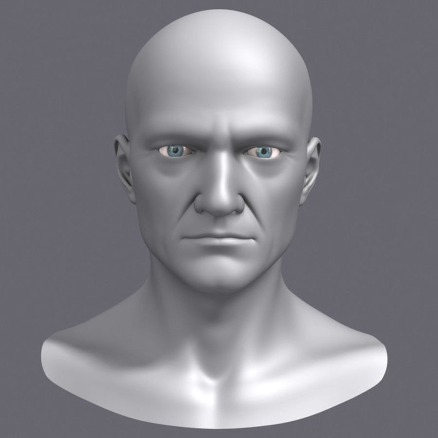 Midlle Aged Man Head 3d Model royalty-free 3d model - Preview no. 1