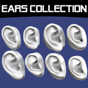 Human Ears Collection 3d model