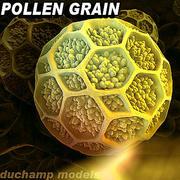 Пыльцевое зерно 3d model