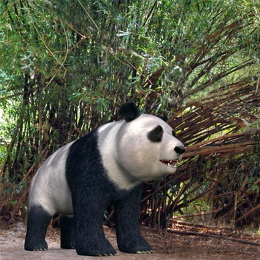 Panda.zip royalty-free 3d model - Preview no. 2