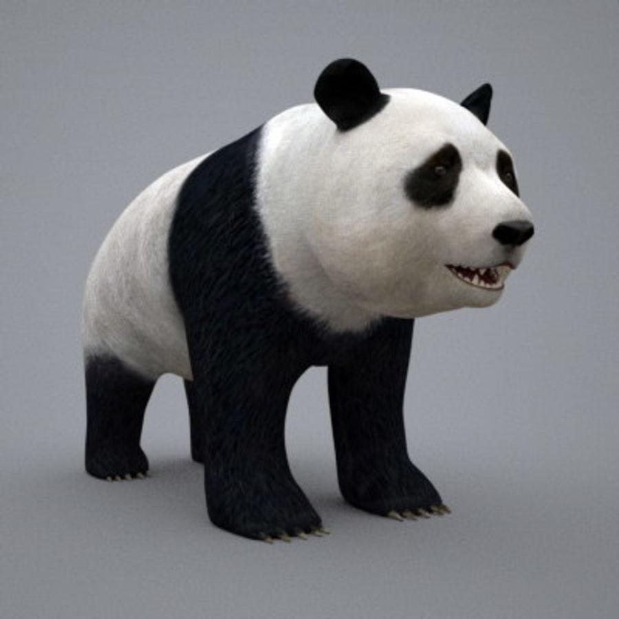 Panda.zip royalty-free 3d model - Preview no. 7