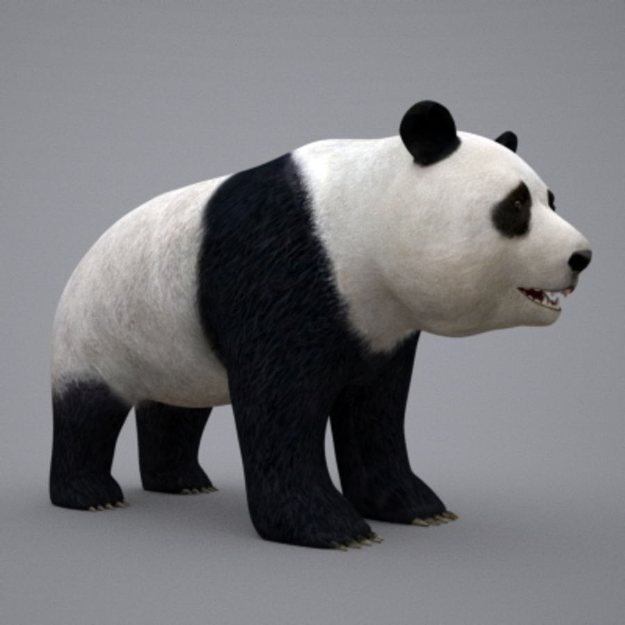 Panda.zip royalty-free 3d model - Preview no. 1