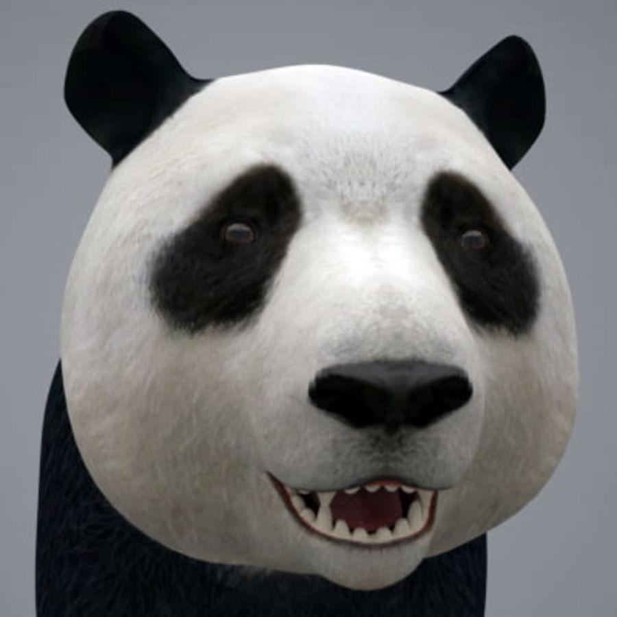 Panda.zip royalty-free 3d model - Preview no. 3