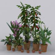 цветы 02 3d model