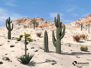 XfrogPlants Billboards: USA Südwesten 3d model