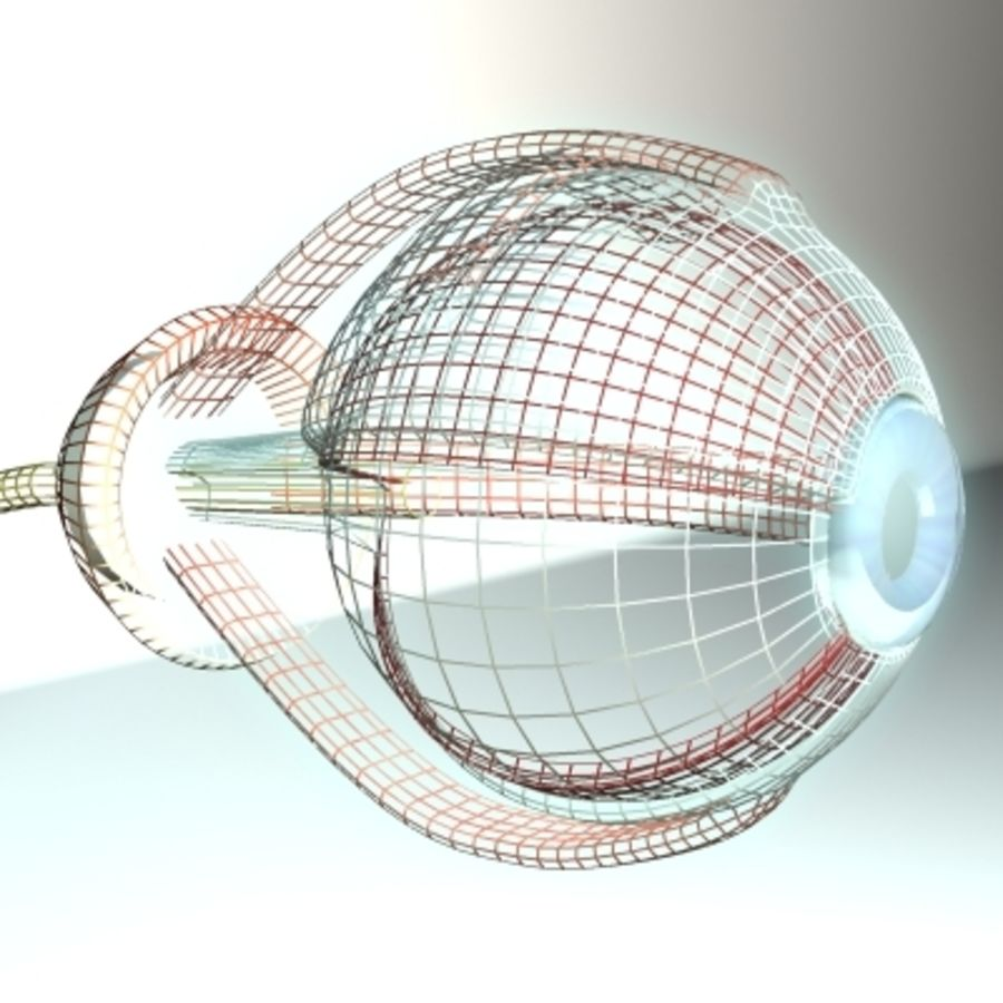 eye.zip royalty-free 3d model - Preview no. 3