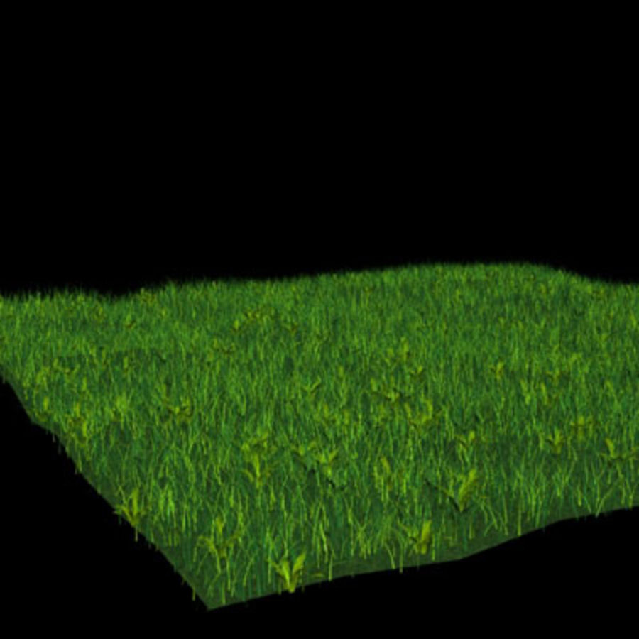 Ground01.zip royalty-free 3d model - Preview no. 3