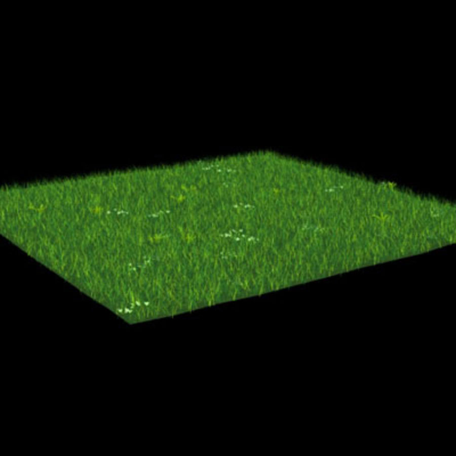 Ground01.zip royalty-free 3d model - Preview no. 4