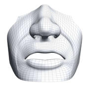 mouth-nose.obj 3d model