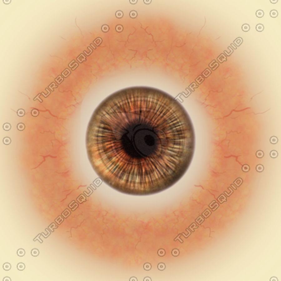 eye royalty-free 3d model - Preview no. 9
