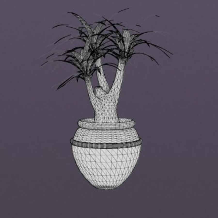 Decor-Potted Palm 001 royalty-free 3d model - Preview no. 2