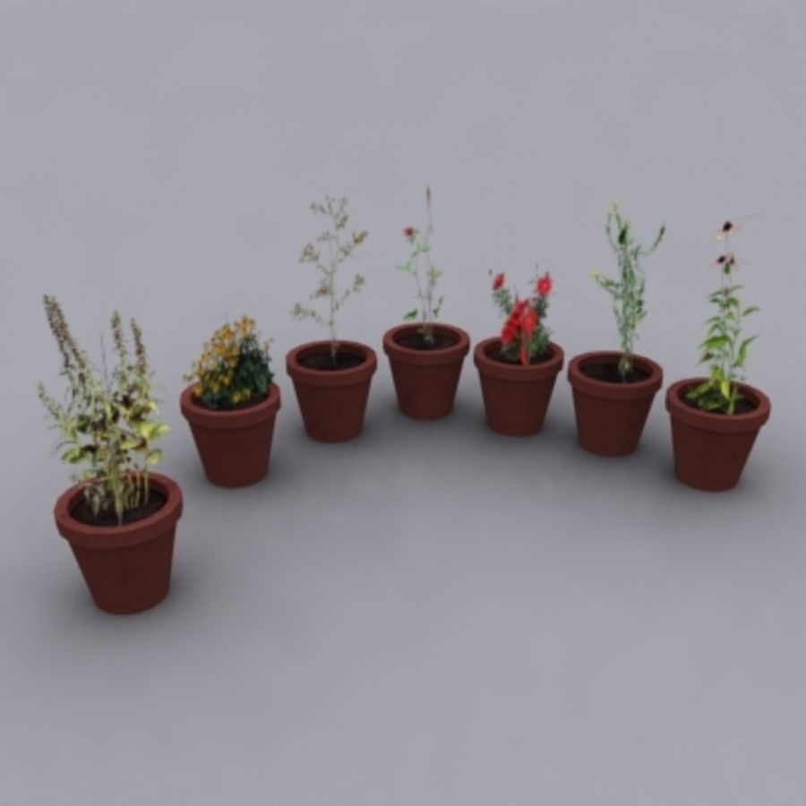 화분에 심은 꽃과 식물 (7) royalty-free 3d model - Preview no. 1